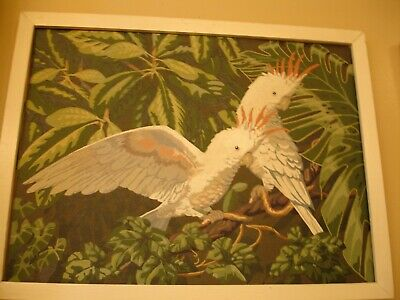 Paint By Numbers Vintage 60'S Cockatoo's  Birds 26 Inches By 20 Inches