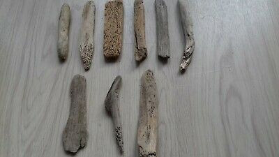 "9 pieces of small driftwood from 6 to 8"" - for arts & crafts"