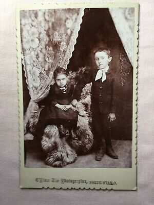 Antique Cabinet Card Photo of Brother & Sister of the Droscha family