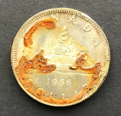 1966 Canadian Silver Dollar, No Reserve!  As shown on picture *virtus*