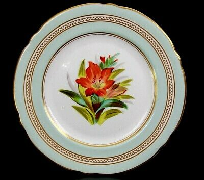 Antique English Fine Porcelain Display Flower Plate Circa 1860