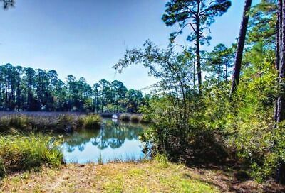 2.86 AC WATERFRONT!By Pond & Escambia River,close to PENSACOLA,FL/PreForeclosure