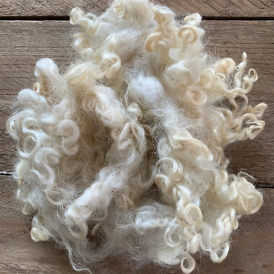 Raw washed Cotswold sheep wool Fleece fibre Crafts felting curly locks 100g