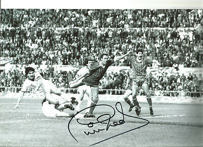 Phil Neal Liverpool 12 x 8 inch hand signed authentic football photo SS321C