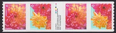 DAHLIA, DAHLIAS = GARDEN FLOWERS = GUTTER strip of 4 coil stamps MNH Canada 2020