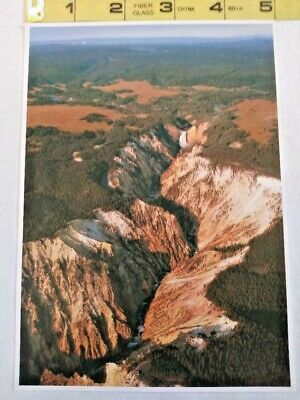 Yellowstone National Park The Grand Canyon Postcard