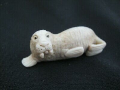 Fantastic Hand Carved Scrimshaw Statue Of A Walrus - Carved In Red Deer Antler
