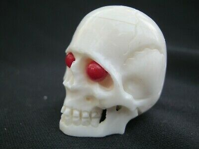 Unusual Carved Anatomically Accurate Skull Memento Mori In Buffalo Bone & Coral