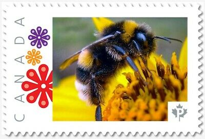 BEE = BUMBLEBEE = Picture Postage stamp MNH-VF Canada 2019 [p19-02sn24]