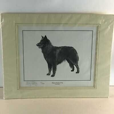 Signed Numbered by Mike J. Sibley Groenendoel Belgian Sheepdog Matted Print
