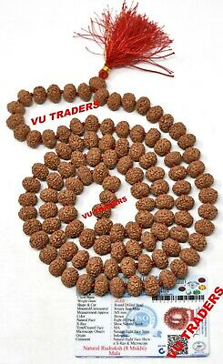 8 Mukhi Rudraksha Mala Eight Face Rudraksh Rosary 108+1 Bead Certified 13-15 MM
