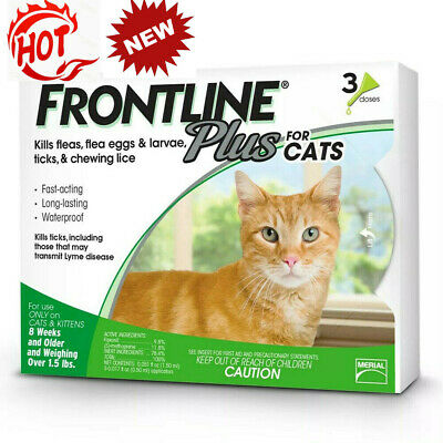 Frontline Plus Flea Lice Tick Remedy for Cats and Kittens 3 Month Dose,new