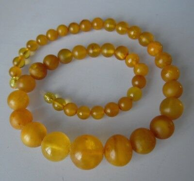 Very beautiful Old Natural Baltic Amber Bernstein beads necklace 35.2