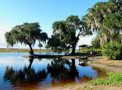1+/- AC CanalFront by Hornet Lake,Cocoa Beach, Cape Canaveral,FL/Pre-Foreclosure