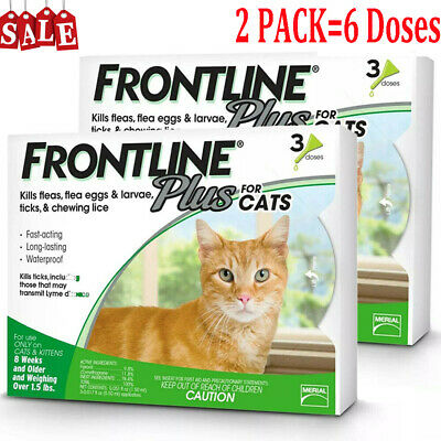 FRONTLINE PLUS Flea Tick Control For  Cats Over 1.5 LBS 6 Months Supply 6 Doses