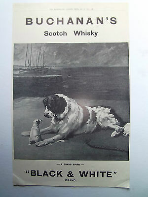 Whisky Buchanans Black And White Scotch Old Vintage Advert Dated 1911