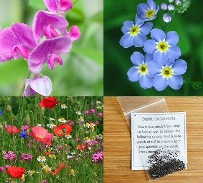 Seeds bags 10x Funeral seed plant | Forget Me Not Sunflower Wildflower Sweet Pea