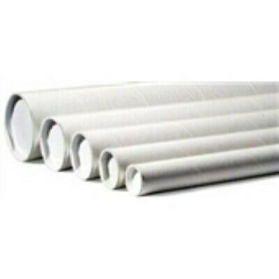 """50 - 2 x 12""""  White Tube - End Cap Included"""
