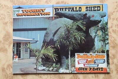 """Lefty"" World's Biggest Water Buffalo Darwin N.T. Australia Postcard"