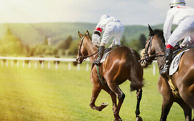 Backing Laying Profit System For Betfair