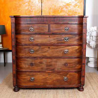 Antique Georgian Chest of Drawers George IV Rosewood Mahogany Large Bowfront