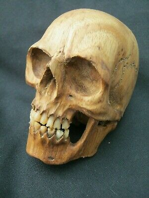 Unusual Hand Carved Anatomically Accurate Skull Memento Mori Teak Wood & Bone