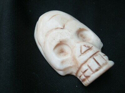 Unusual Hand Carved Skull Memento Mori In Buffalo Bone