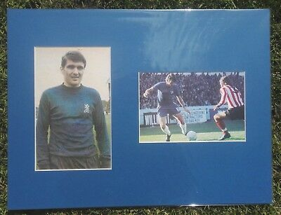 CHARLIE COOKE CHELSEA 1960s SCOTLAND LEGEND SIGNED 16x12 MOUNTED DISPLAY