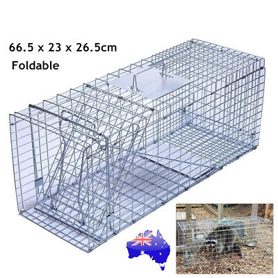 Humane Live Animal Trap Possum Rat Feral Cat Rabbit Hare Fox Catch Folding Cage