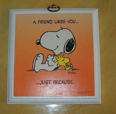 """Snoopy Woodstock Peanuts Charlie Brown Retro Tin Metal Sign 9x11/"""" Plaque NEW"""