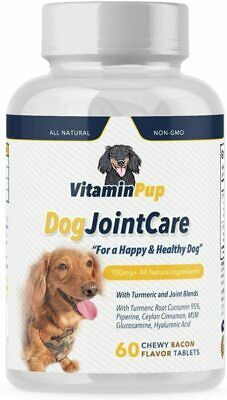 Dog Joint Care Glucosamine Chondroitin Turmeric MSM Cinnamon Pet Supplement 60Ct