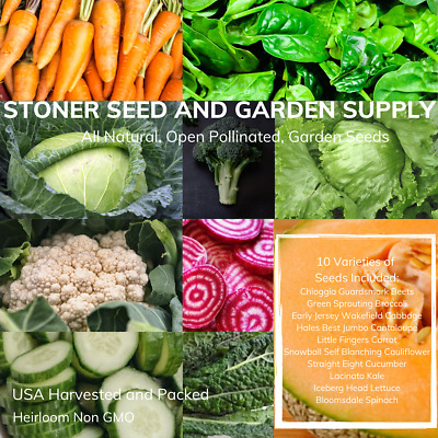 500+ Heirloom Vegetable Seed 10 Variety Garden Pack Emergency Survival Non-GMO
