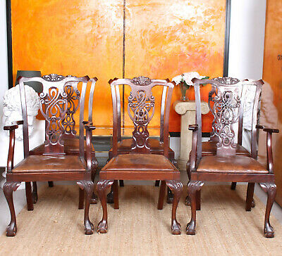 6 Antique Chippendale Mahogany Leather Dining Chairs 19th Century Victorian