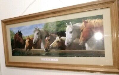Set of Two Horse Pictures under Glass Wood Frame Companions & Board Of Directors