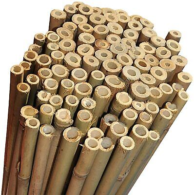 Strong Heavy Duty Professional Thick Bamboo Plant Support Garden Canes