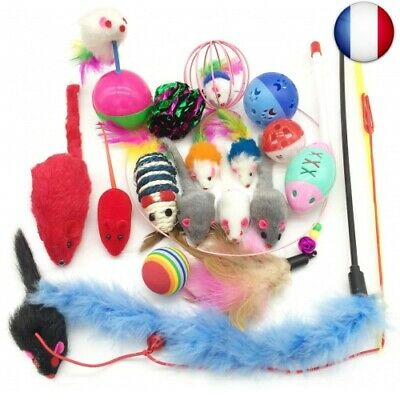 PietyPet Jouets Chat, Jouet pour Chat Animaux Domestiques Toys pour Chat Chaton