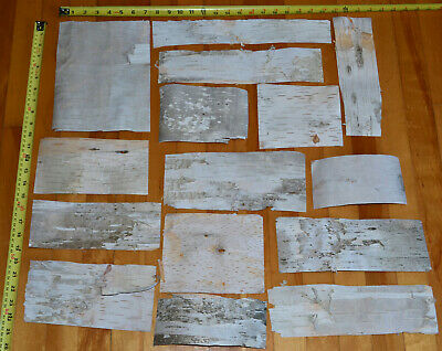 Natural Birch Bark Sheets Pieces - 4 SQ FT - 15pcs