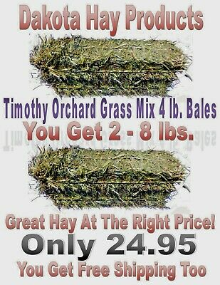 Buy One Get One Free!  Timothy Hay 3 lb. Bales for RABBITS, GUINEA PIGS