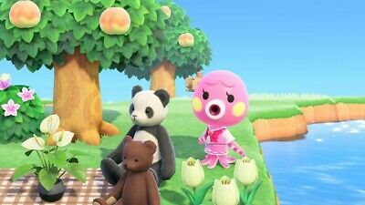Marina - Animal Crossing: New Horizons Villagers Move In Service