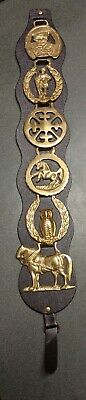 6 Vintage Brass Horse Medallions Leather Harness Saddle Strap Horses Knight Owl
