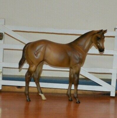 Trad Peter Stone Weanling
