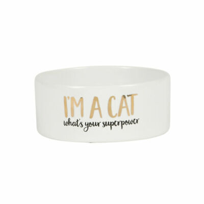 CAT SUPERPOWER PET BOWL, cat dish, sass and belle