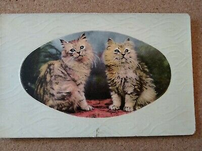 Vintage Cat Postcard. Two Tabby kittens in oval frame.  Not mailed.