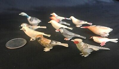 12 Vintage Miniature Japanese Okimono Carved and Colored Birds