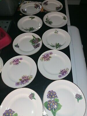 Flower Inspired Fine Bone China Side Plates X 10 Mixed, Tea Party, Vintage,...
