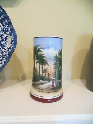 SOUVENIR mug stein LITHOPHANE THE ROYAL PALMS BERMUDA Antique Really Nice