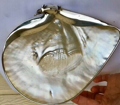 Giant Mother Of Pearl Gold Lip Oyster Shell Footed Tray South Sea Golden PRETTY