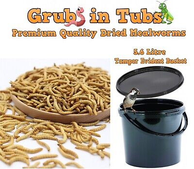 Dried Mealworms  5.6L Best Quality Wild Bird Food Snack For Birds, Chickens 1Kg