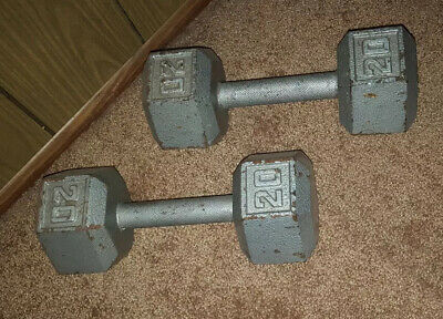 20lb Pair Hex Dumbbells Cast Iron 40lbs Total : hexagon style dumbbell Weights