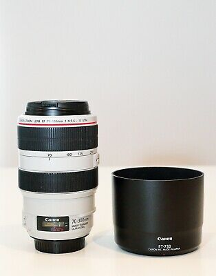 Canon Zoom EF 70 - 300mm 1: 4- 5,6 L IS USM